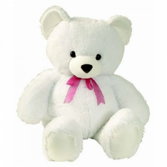 Teddy Bear 1.5 Ft: I am sorry Manesar,  India