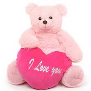 Valentine Teddy: Miss you New Mumbai,  India