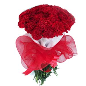 Carnations Bunch Red: Birthday flowers Kapurthala,  India