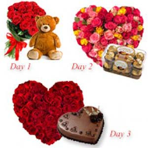 Roses With Choco And Teddy: Valentine week Panipat,  India