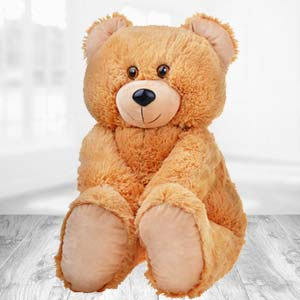 Teddy Bear 2 Feet: 1st birthday gifts Ujjain,  India