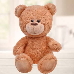1 Feet Brown Teddy Bear: Kids birthday Gwalior,  India