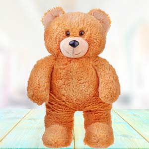 3 Feet Teddy Bear: Miss you Jamshedpur,  India