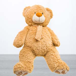 5 Feet Standing Teddy Bear: Unique anniversary gifts Sirsa,  India