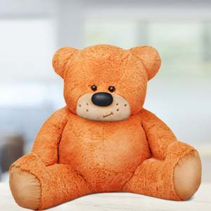 5 Feet Sitting Teddy Bear: Hug Day Hissar,  India