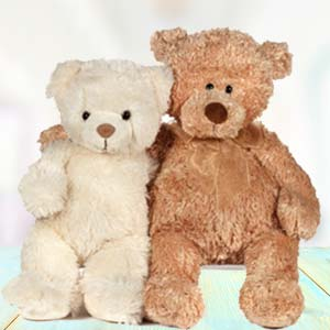 Special Teddy Day Combo: New born  India