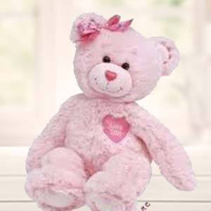 Pink Teddy: 1st birthday gifts Panipat,  India
