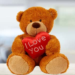 I Love You Teddy Soft Toys Kaju Katli Combo, India