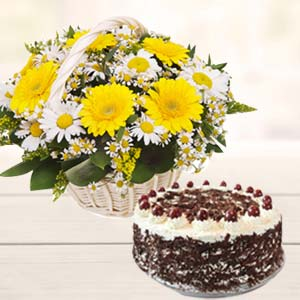 Gerbera With Black Forest Cake: Get well soon Mathura,  India
