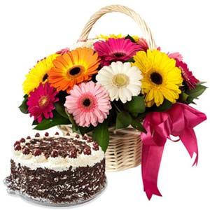 Mix Gerbera With Black Forest Cake: Karwa Chauth Gifts Kapurthala,  India