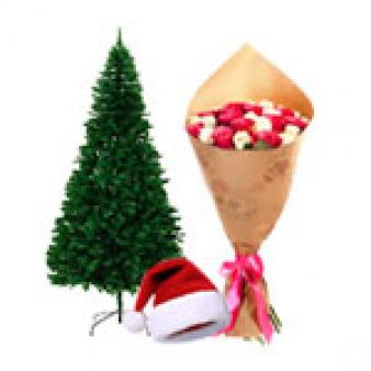 Christmas Tree Gifts Combo: Christmas Sirsa,  India