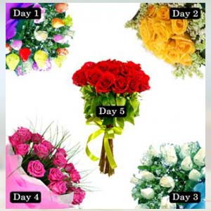 5 Roses Bunch Of Days Serenade: Hug Day Meerut,  India